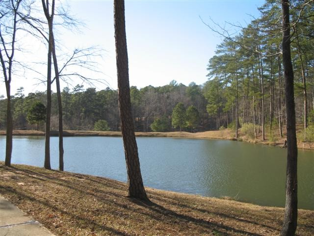 Image of 1021 Scull Shoals Drive