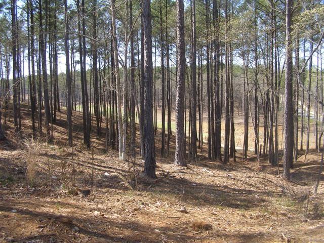 Image 2 of 1021 Mill Creek