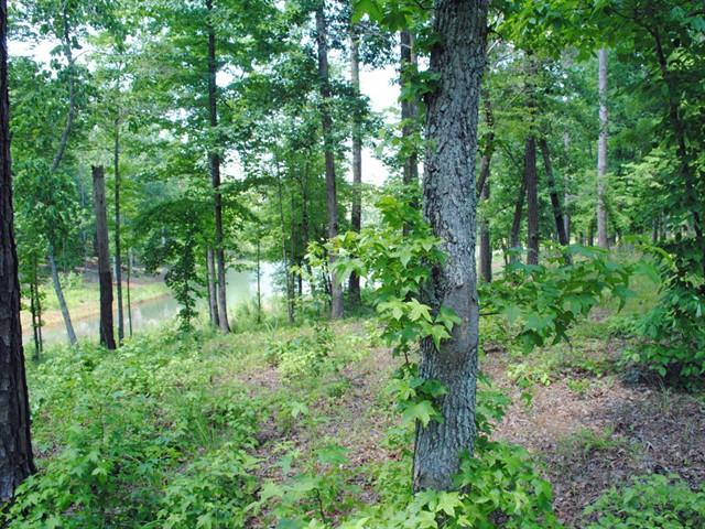 Image 3 of 1060 Angel Pond East