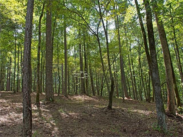 Small image of 1161 Callahan's Ridge Rd.
