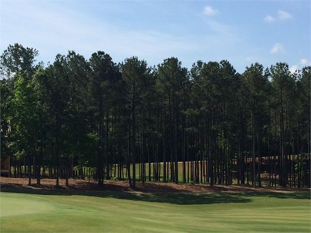 Image 3 of 1041 Golf View Lane
