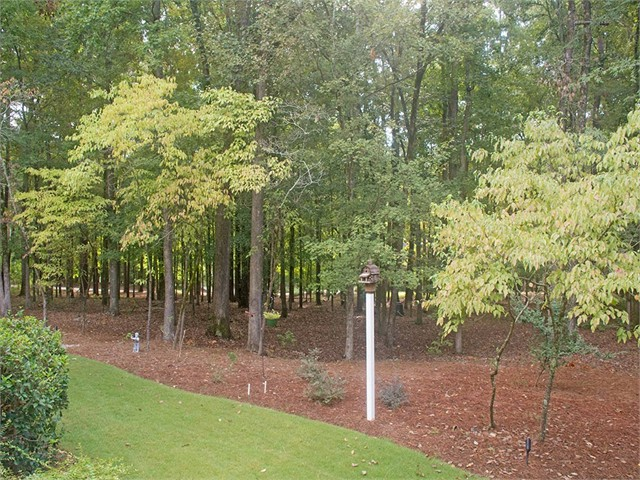 Singles in pine grove or