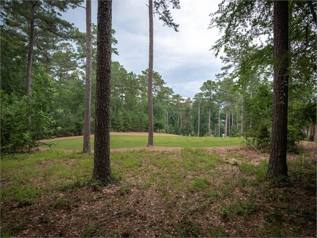 Image 3 of 1030 Thorton Creek