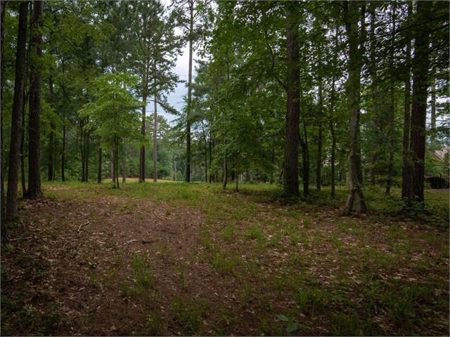 Image 4 of 1030 Thorton Creek