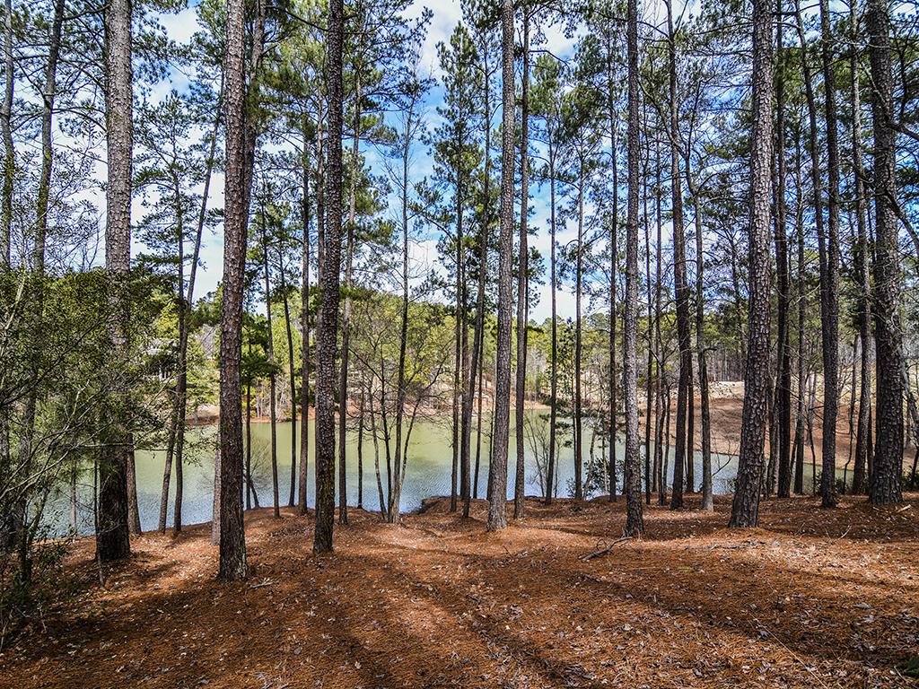 1071 cedar ridge lane at reynolds lake oconee for Cedar ridge